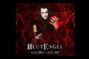 asche_news